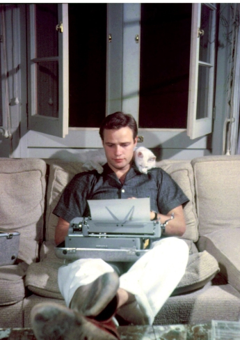 """Oh, Transman, you know I prefer the Oxford comma."" Marlon Brando and cat as us working on this blog post."