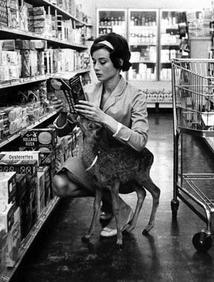 """Let's see...I picked up Transman's fawn from the vet, got his stupid almond milk, he asked for a magazine..."" Audrey Hepburn as Sherpa."